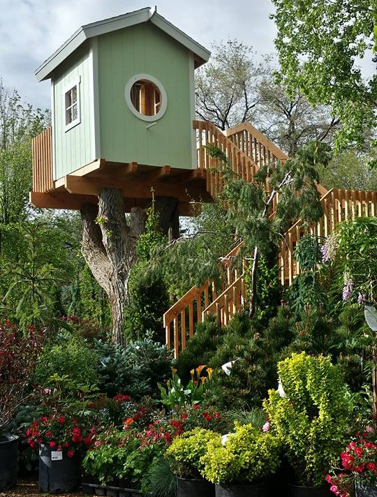 Big Trees Nursery Gardens Southern Utah S Largest Selection Of