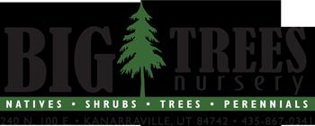 Big Trees Nursery & Gardens Logo